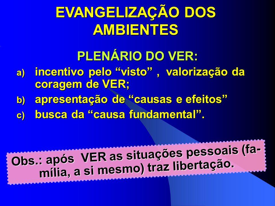 EVANGELIZAÇÃO DOS AMBIENTES PLENÁRIO DO VER: a) incentivo pelo visto, valorização da coragem de VER; b) apresentação de causas e efeitos c) busca da c