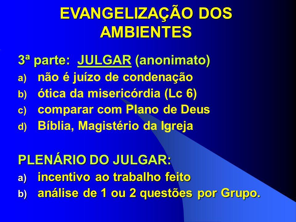 EVANGELIZAÇÃO DOS AMBIENTES 3ª parte: JULGAR (anonimato) a) não é juízo de condenação b) ótica da misericórdia (Lc 6) c) comparar com Plano de Deus d)