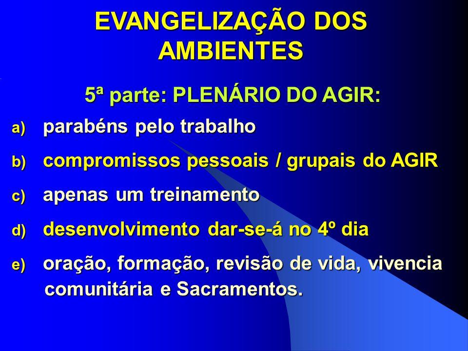 EVANGELIZAÇÃO DOS AMBIENTES 5ª parte: PLENÁRIO DO AGIR: a) parabéns pelo trabalho b) compromissos pessoais / grupais do AGIR c) apenas um treinamento