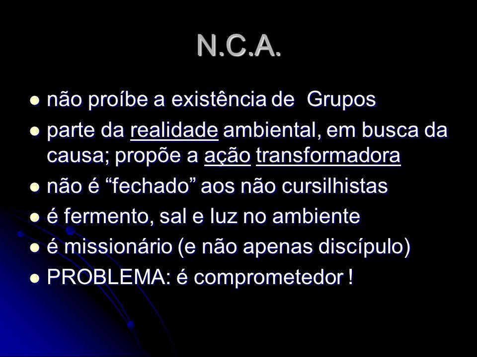 N.C.A. não proíbe a existência de Grupos não proíbe a existência de Grupos parte da realidade ambiental, em busca da causa; propõe a ação transformado