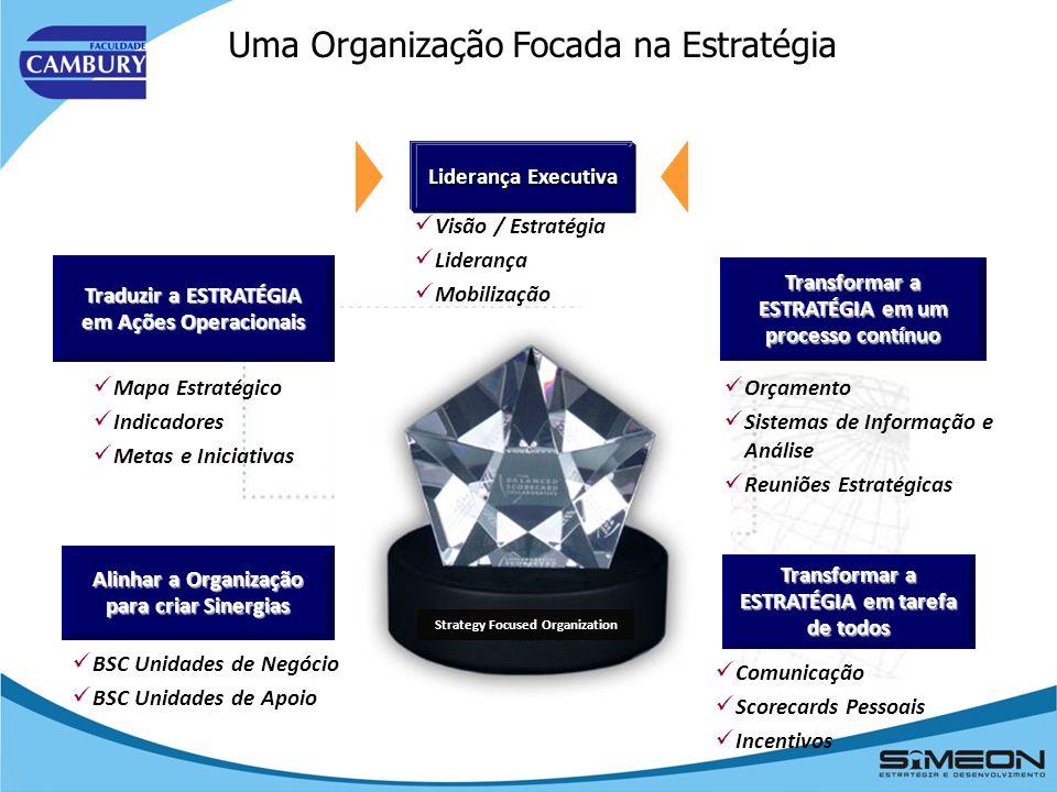 A aplicação começa com a definição da visão, missão e valores da organização.