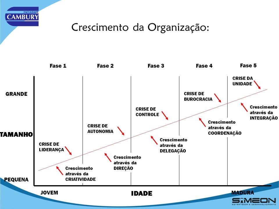 Observações Gerais sobre essa tarefa: Objetivos Estratégicos Gerais (continuação): A derivação de objetivos estratégicos é útil para a redução e a seleção de uma grande quantidade de possíveis objetivos estratégicos, para chegar assim aos verdadeiros objetivos estratégicos relevantes.