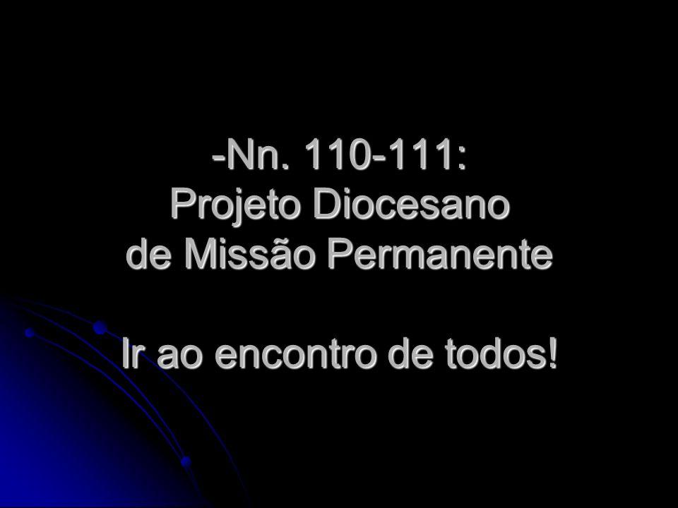 -Nn. 110-111: Projeto Diocesano de Missão Permanente Ir ao encontro de todos!