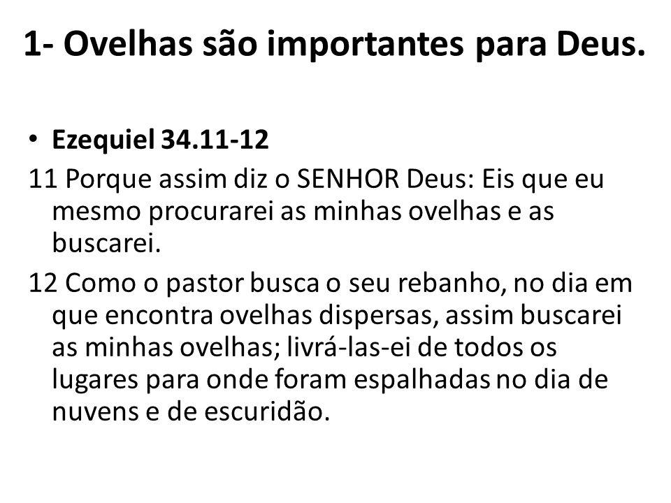 Ezequiel 34.11-12 11 Porque assim diz o SENHOR Deus: Eis que eu mesmo procurarei as minhas ovelhas e as buscarei. 12 Como o pastor busca o seu rebanho