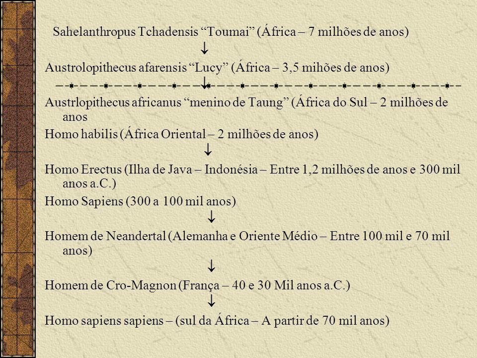 Sahelanthropus Tchadensis Toumai (África – 7 milhões de anos) Austrolopithecus afarensis Lucy (África – 3,5 mihões de anos) Austrlopithecus africanus