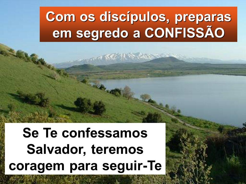 Se Te confessamos Salvador, teremos coragem para seguir-Te Com os discípulos, preparas em segredo a CONFISSÃO