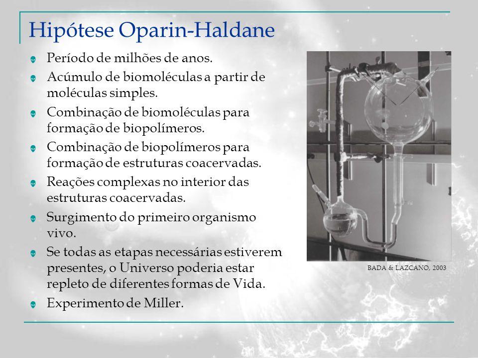 Hipótese Oparin-Haldane Período de milhões de anos. Acúmulo de biomoléculas a partir de moléculas simples. Combinação de biomoléculas para formação de
