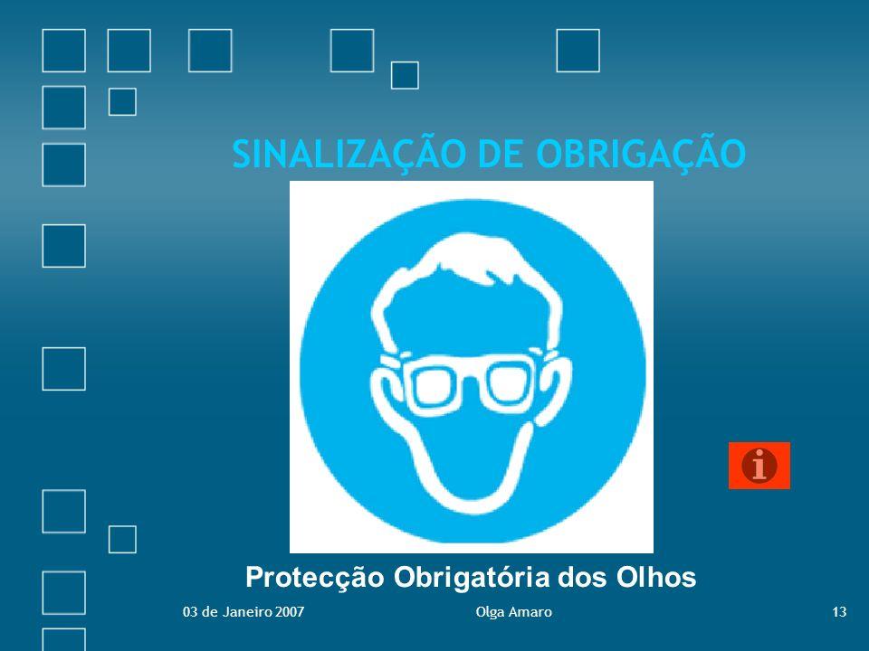 03 de Janeiro 2007Olga Amaro13 SINALIZAÇÃO DE OBRIGAÇÃO Protecção Obrigatória dos Olhos