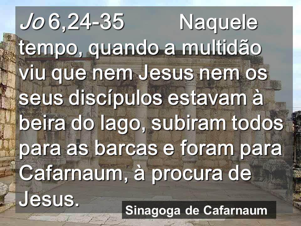 Jo 6,24-35 Naquele tempo, quando a multidão viu que nem Jesus nem os seus discípulos estavam à beira do lago, subiram todos para as barcas e foram para Cafarnaum, à procura de Jesus.