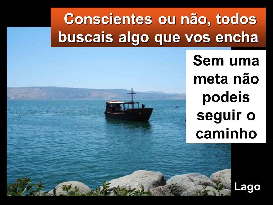 Jo 6,24-35 Naquele tempo, quando a multidão viu que nem Jesus nem os seus discípulos estavam à beira do lago, subiram todos para as barcas e foram par