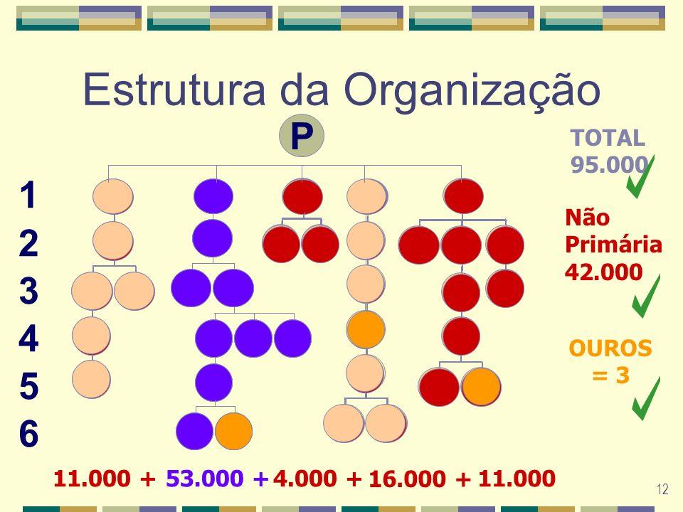 12 P Estrutura da Organização 53.000 +11.000 +4.000 + 16.000 + 11.000 123456123456 TOTAL 95.000 Não Primária 42.000 OUROS = 3