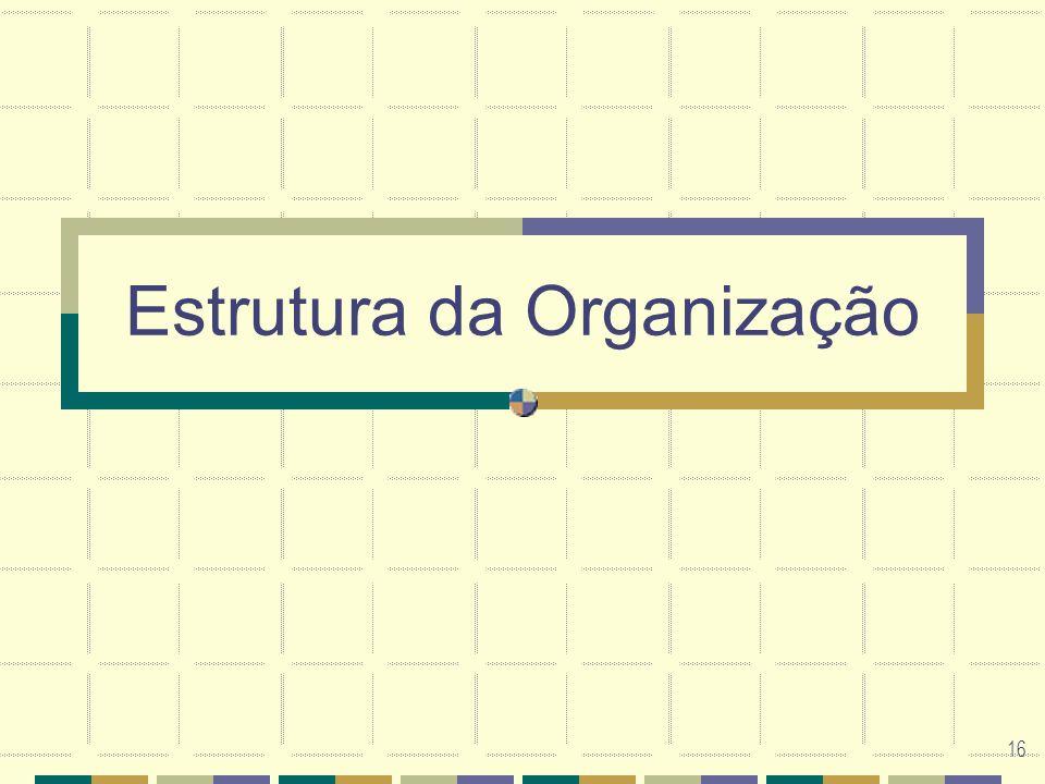16 Estrutura da Organização