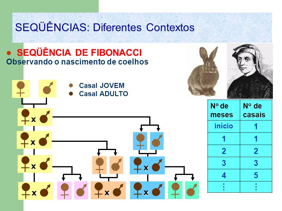 x SEQÜÊNCIA DE FIBONACCI Observando o nascimento de coelhos N o de meses N o de casais início 1 11 22 33 45............ x x x x x x SEQÜÊNCIAS: Difere