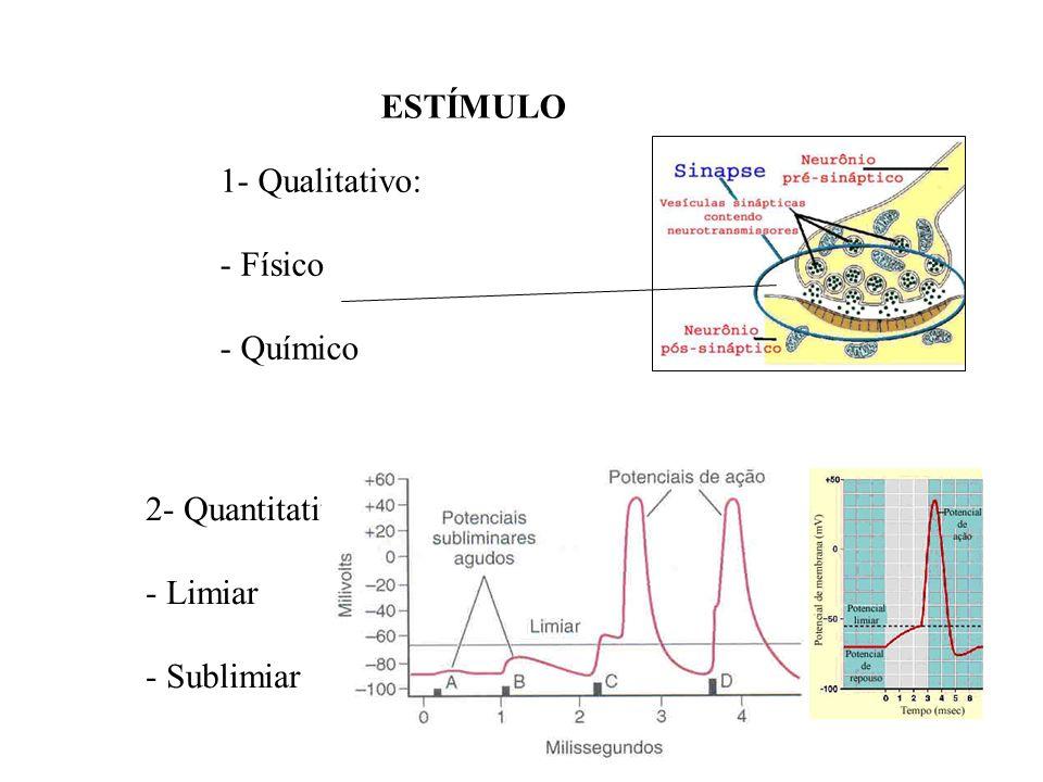 ESTÍMULO 1- Qualitativo: - Físico - Químico 2- Quantitativo: - Limiar - Sublimiar