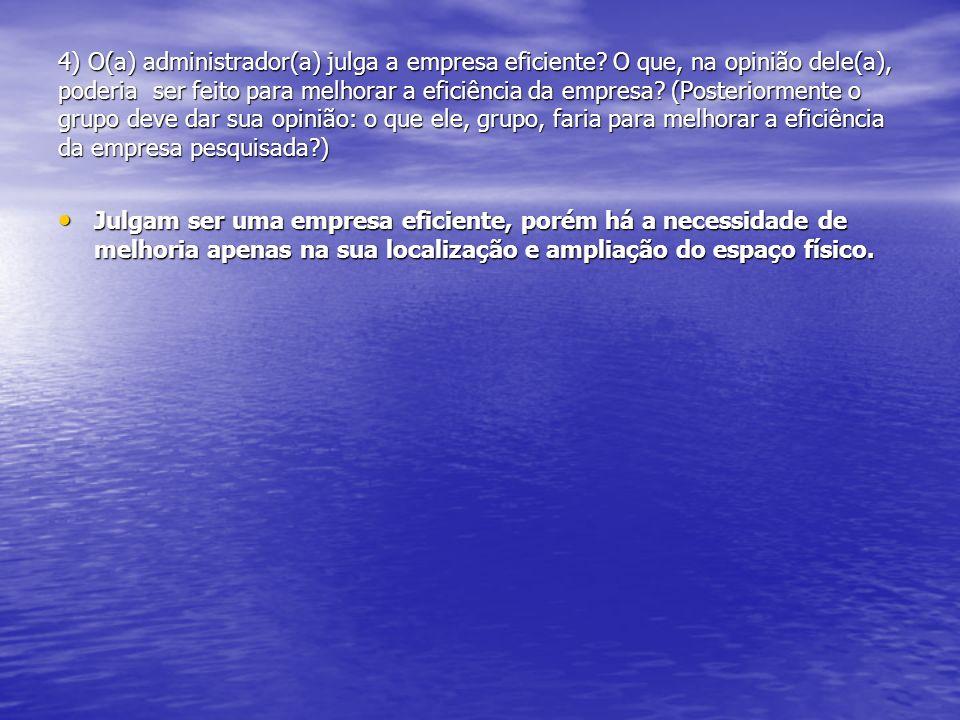 4) O(a) administrador(a) julga a empresa eficiente? O que, na opinião dele(a), poderia ser feito para melhorar a eficiência da empresa? (Posteriorment