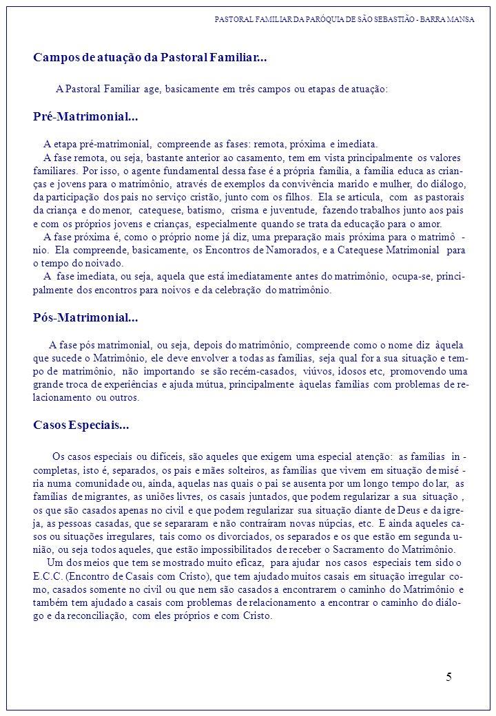 5 PASTORAL FAMILIAR DA PARÓQUIA DE SÃO SEBASTIÃO - BARRA MANSA Campos de atuação da Pastoral Familiar... A Pastoral Familiar age, basicamente em três