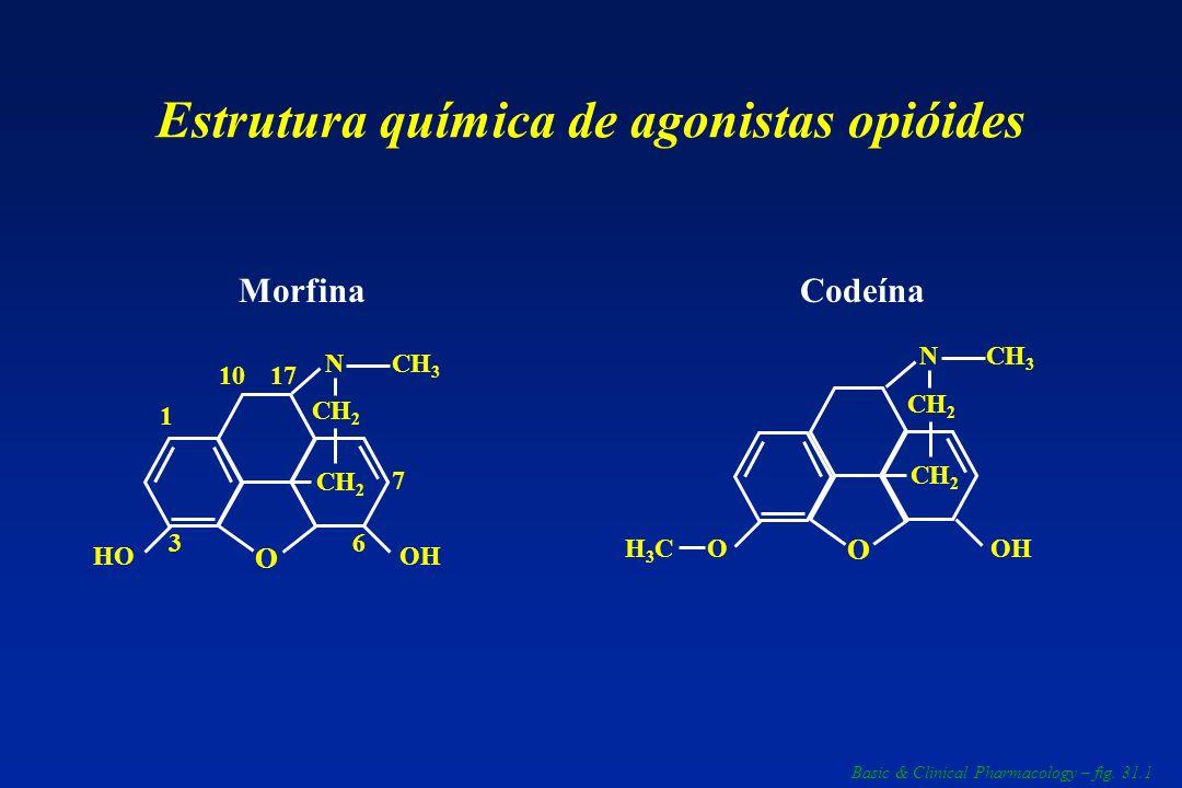 Estrutura química de agonistas opióides 1 3 1710 6 7 N CH 2 CH 3 OHHO Morfina O N CH 2 CH 3 H3CH3CO Codeína OH O Basic & Clinical Pharmacology – fig.