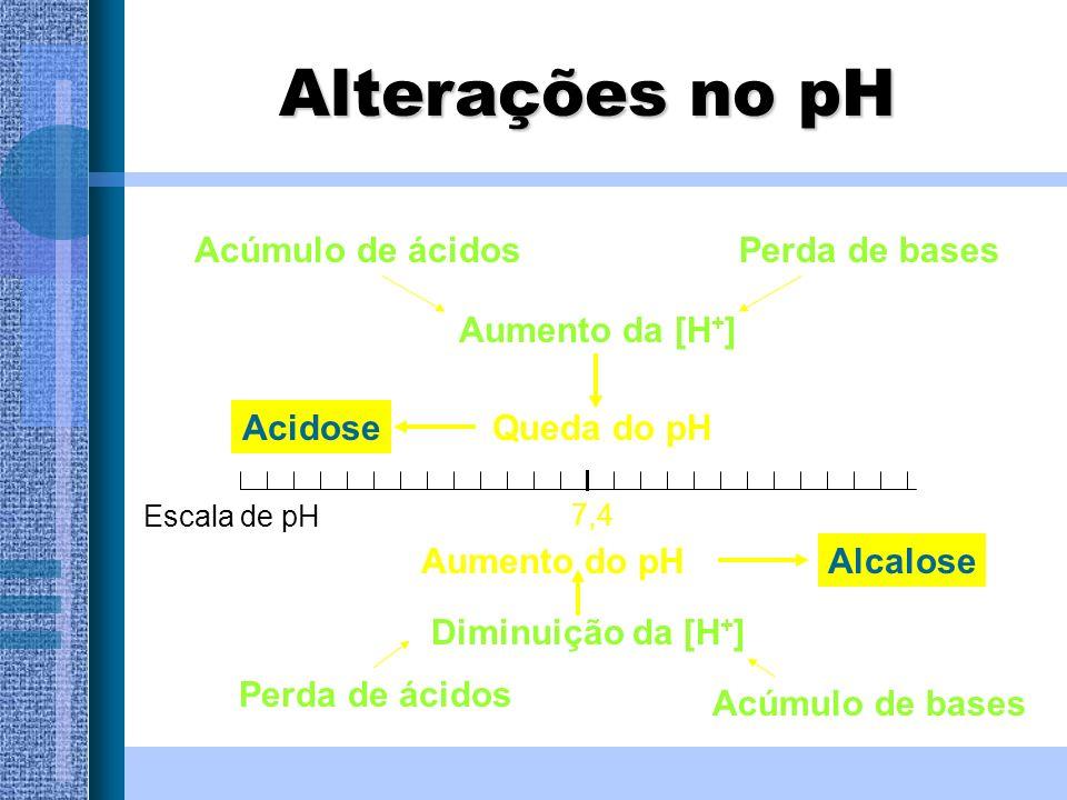 Aumento da [H + ] 7,4 Acidose Alcalose Queda do pH Acúmulo de ácidos Acúmulo de bases Perda de ácidos Perda de bases Diminuição da [H + ] Escala de pH