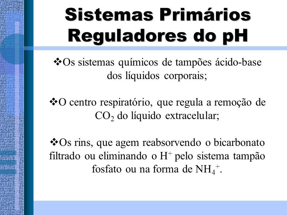 Sistemas Primários Reguladores do pH Os sistemas químicos de tampões ácido-base dos líquidos corporais; O centro respiratório, que regula a remoção de