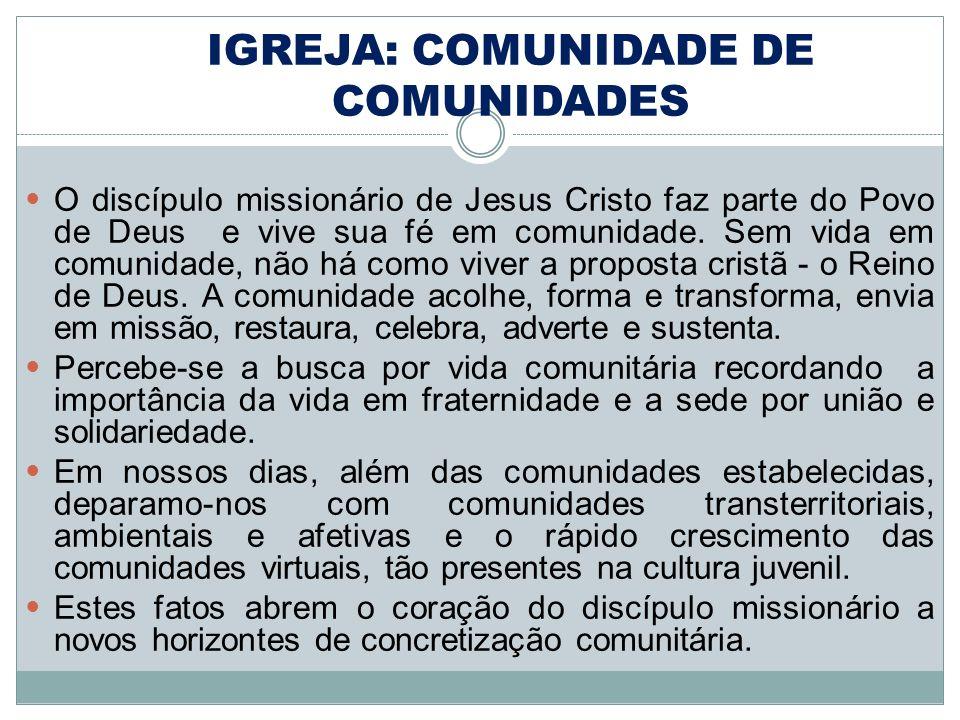 O discípulo missionário de Jesus Cristo faz parte do Povo de Deus e vive sua fé em comunidade. Sem vida em comunidade, não há como viver a proposta cr