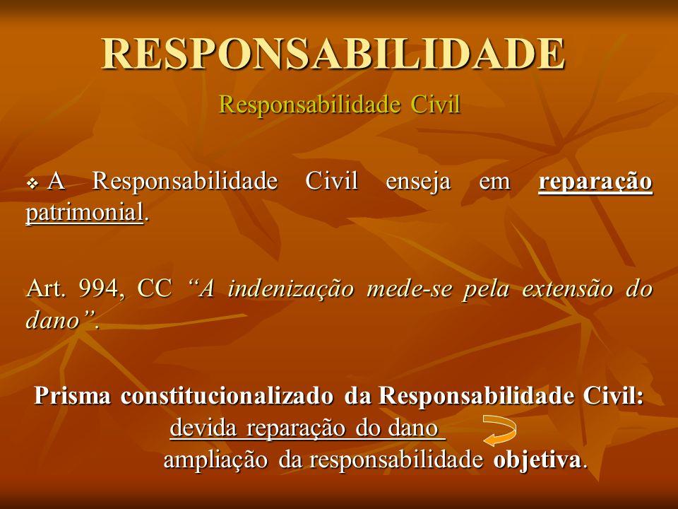 RESPONSABILIDADE Responsabilidade Civil A Responsabilidade Civil enseja em reparação patrimonial. A Responsabilidade Civil enseja em reparação patrimo