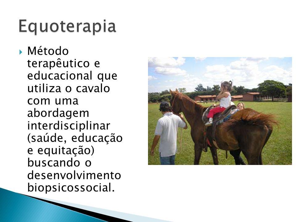 Método terapêutico e educacional que utiliza o cavalo com uma abordagem interdisciplinar (saúde, educação e equitação) buscando o desenvolvimento biop