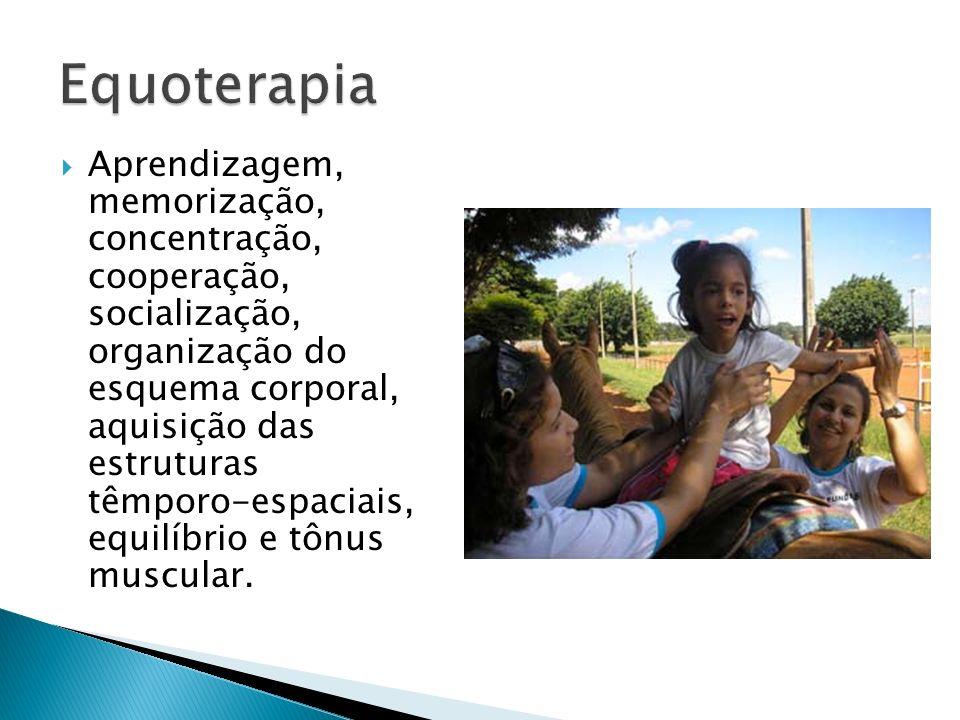 Aprendizagem, memorização, concentração, cooperação, socialização, organização do esquema corporal, aquisição das estruturas têmporo-espaciais, equilí