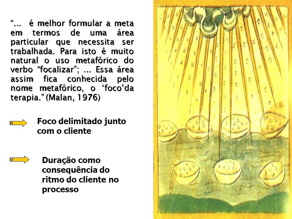 Modelo = trabalho focalizado O foco não funcionaria como um a priori, infringindo um dos princípios do método fenomenológico?