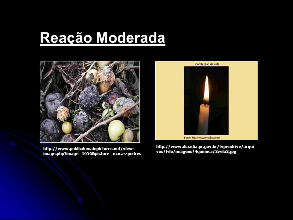 Reação Moderada http://www.publicdomainpictures.net/view- image.php?image=1656&picture=macas-podres http://www.diaadia.pr.gov.br/tvpendrive/arqui vos/