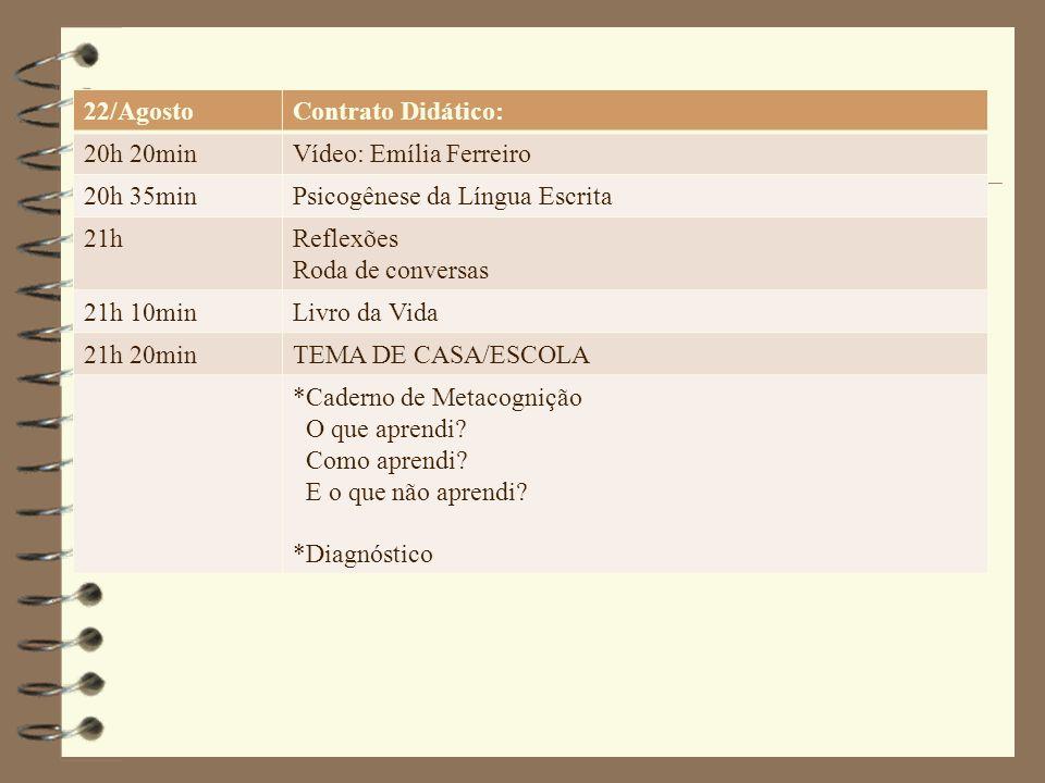 Vídeo: Emília Ferreiro 14