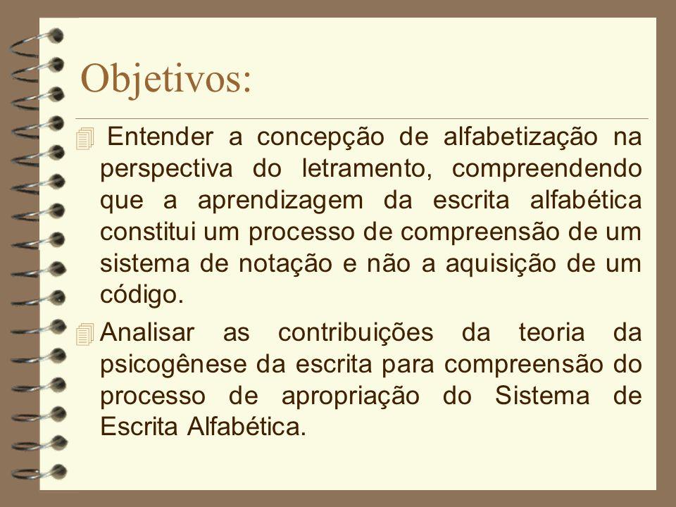 Reflexão/Cartaz Concepções: Definições Certezas Dúvidas Fragilidades