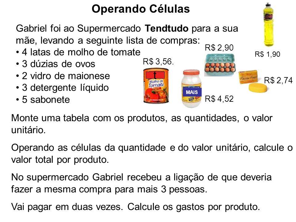Gabriel foi ao Supermercado Tendtudo para a sua mãe, levando a seguinte lista de compras: 4 latas de molho de tomate 3 dúzias de ovos 2 vidro de maion