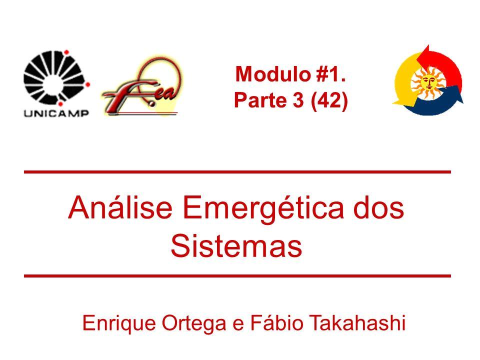 Modulo #1. Parte 3 (42) Análise Emergética dos Sistemas Enrique Ortega e Fábio Takahashi