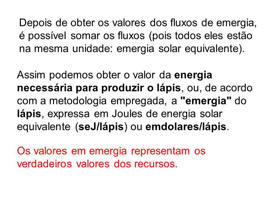Depois de obter os valores dos fluxos de emergia, é possível somar os fluxos (pois todos eles estão na mesma unidade: emergia solar equivalente). Os v