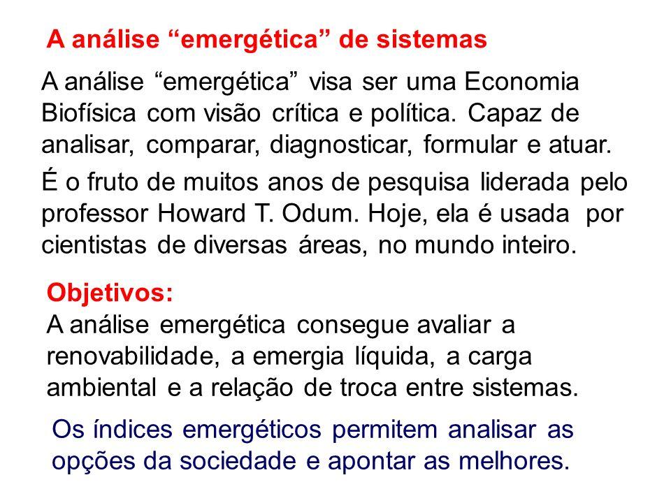 A análise emergética de sistemas A análise emergética visa ser uma Economia Biofísica com visão crítica e política. Capaz de analisar, comparar, diagn