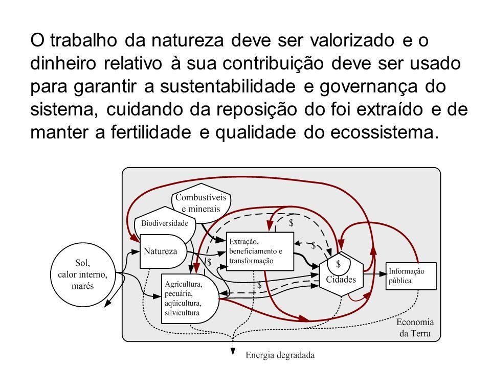 A transformidade (transformity) é o valor inverso da eficiência ecossistêmica.