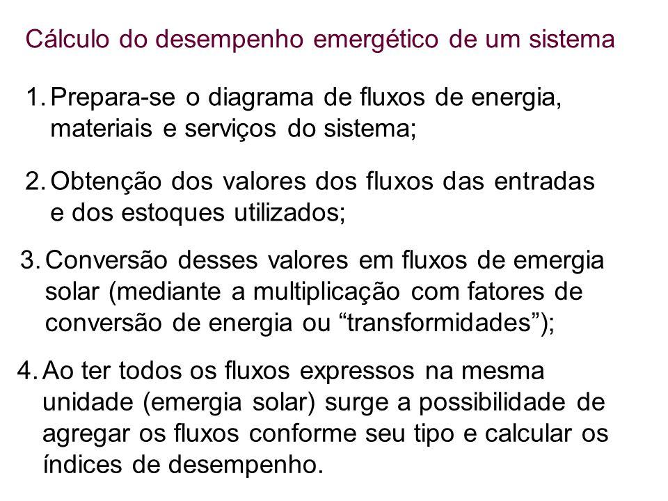 1.Prepara-se o diagrama de fluxos de energia, materiais e serviços do sistema; 2.Obtenção dos valores dos fluxos das entradas e dos estoques utilizado