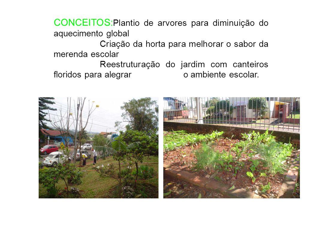 CONCEITOS: Plantio de arvores para diminuição do aquecimento global Criação da horta para melhorar o sabor da merenda escolar Reestruturação do jardim