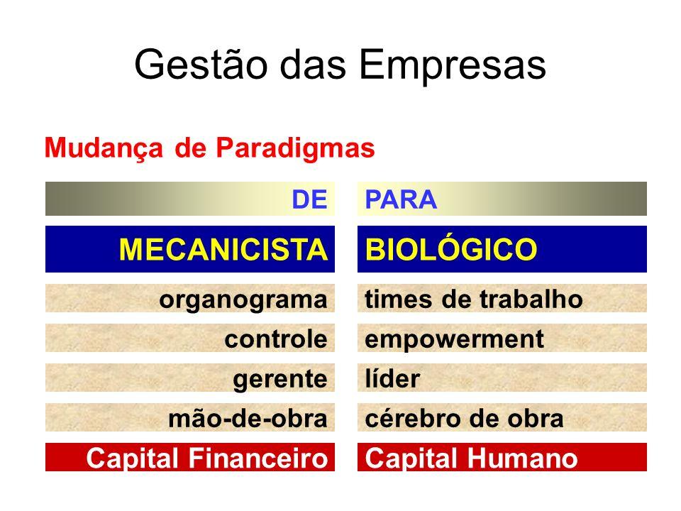 BIOLÓGICOMECANICISTA times de trabalhoorganograma empowermentcontrole lídergerente cérebro de obramão-de-obra Capital HumanoCapital Financeiro Gestão