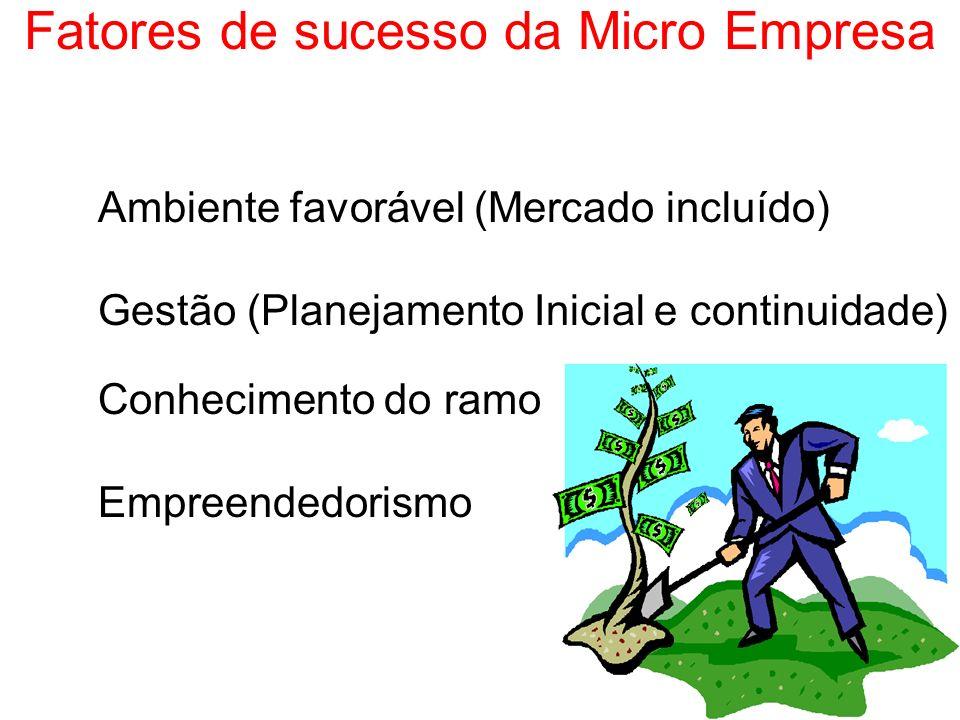 Fatores de sucesso da Micro Empresa Ambiente favorável (Mercado incluído) Gestão (Planejamento Inicial e continuidade) Conhecimento do ramo Empreended
