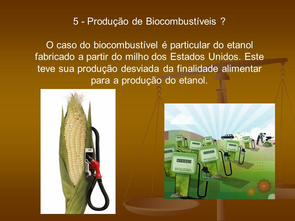 5 - Produção de Biocombustíveis ? O caso do biocombustível é particular do etanol fabricado a partir do milho dos Estados Unidos. Este teve sua produç