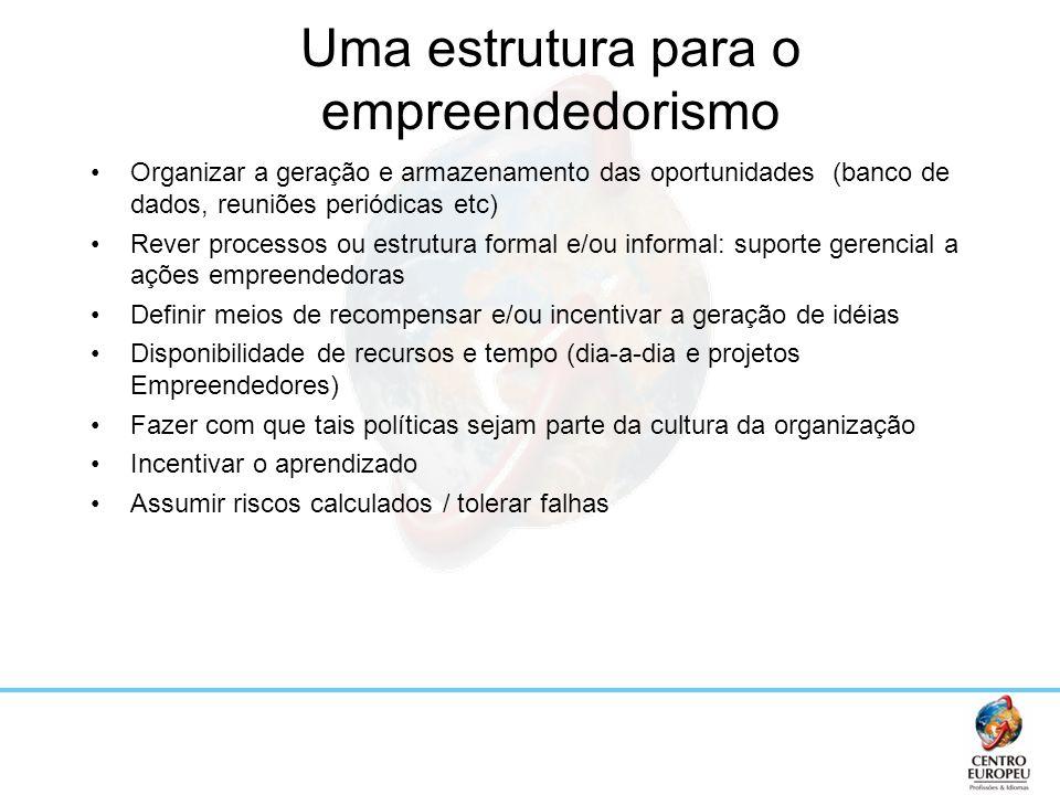 Uma estrutura para o empreendedorismo Organizar a geração e armazenamento das oportunidades (banco de dados, reuniões periódicas etc) Rever processos