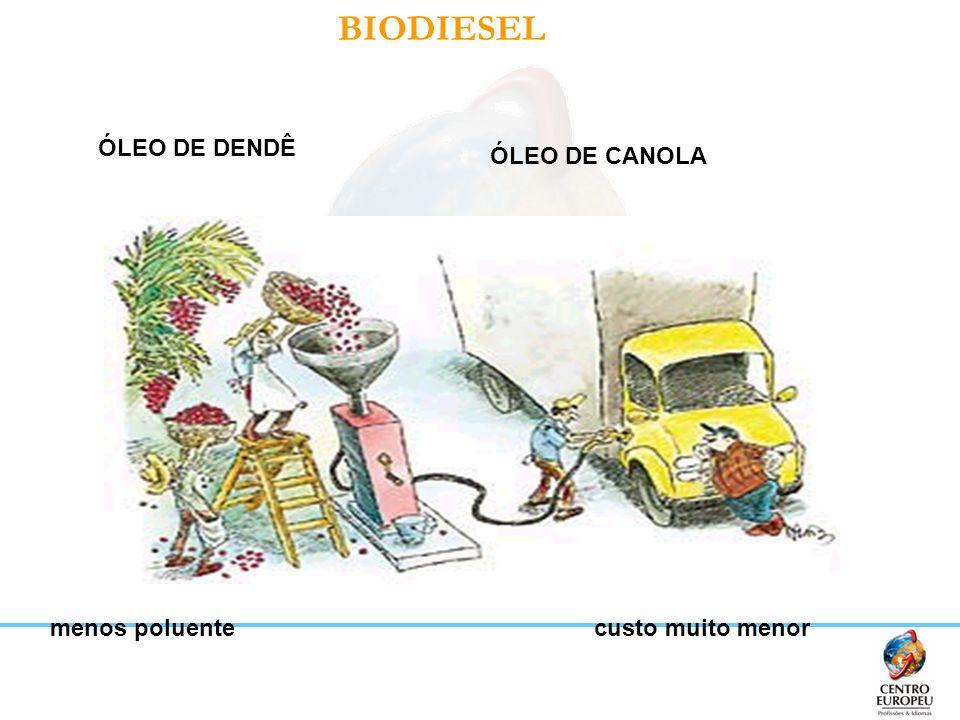 BIODIESEL menos poluentecusto muito menor ÓLEO DE DENDÊ ÓLEO DE CANOLA
