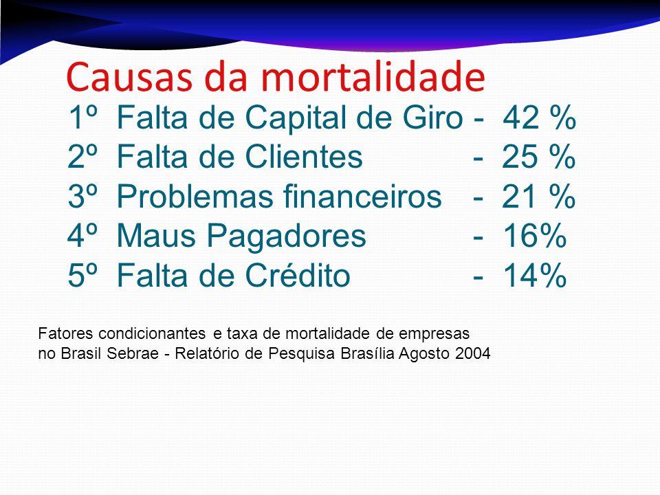 Causas da mortalidade 1º Falta de Capital de Giro - 42 % 2º Falta de Clientes - 25 % 3º Problemas financeiros - 21 % 4º Maus Pagadores - 16% 5º Falta