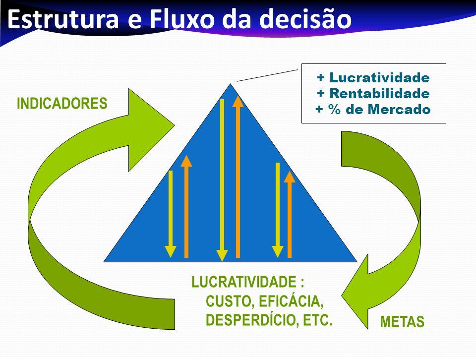 Estrutura e Fluxo da decisão + Lucratividade + Rentabilidade + % de Mercado INDICADORES METAS LUCRATIVIDADE : CUSTO, EFICÁCIA, DESPERDÍCIO, ETC.