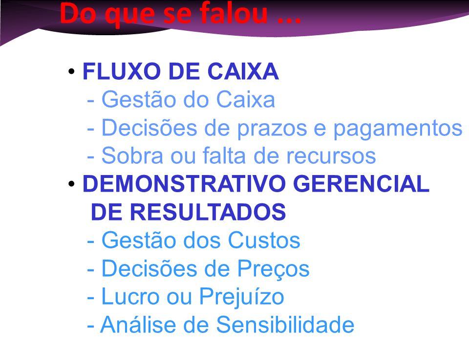 Do que se falou... FLUXO DE CAIXA - Gestão do Caixa - Decisões de prazos e pagamentos - Sobra ou falta de recursos DEMONSTRATIVO GERENCIAL DE RESULTAD