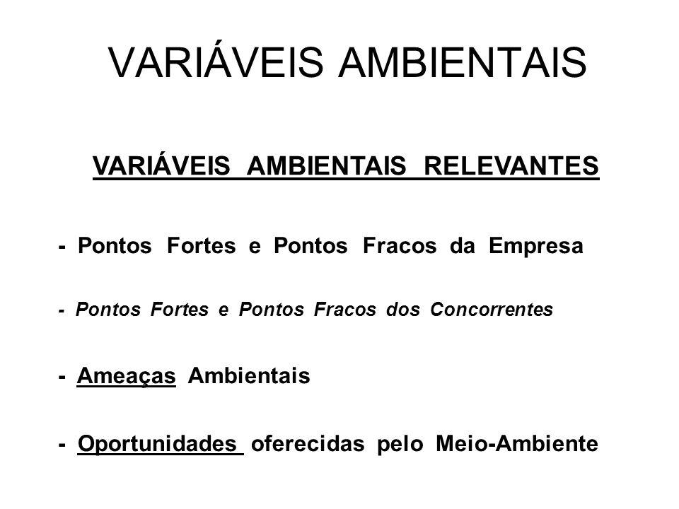 VARIÁVEIS AMBIENTAIS RELEVANTES - Pontos Fortes e Pontos Fracos da Empresa - Pontos Fortes e Pontos Fracos dos Concorrentes - Ameaças Ambientais - Opo