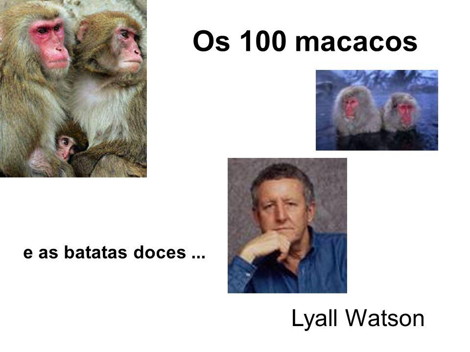 Os 100 macacos Lyall Watson e as batatas doces...