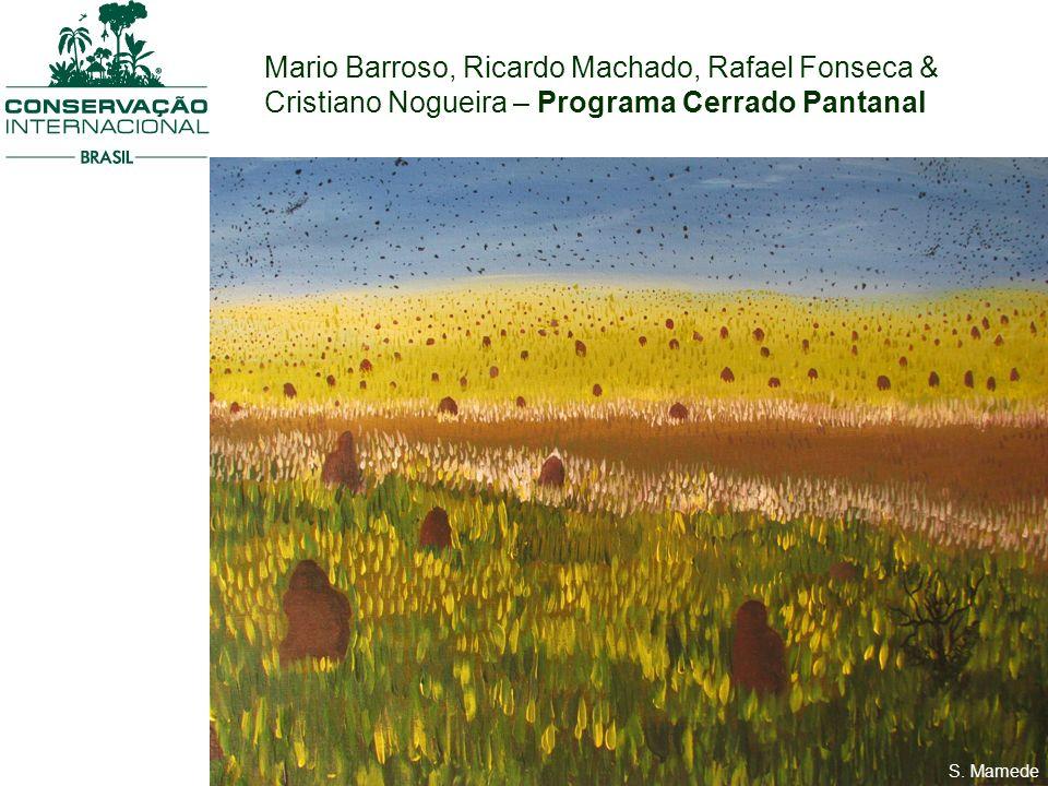 S. Mamede Mario Barroso, Ricardo Machado, Rafael Fonseca & Cristiano Nogueira – Programa Cerrado Pantanal