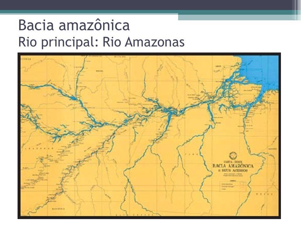Bacia amazônica Rio principal: Rio Amazonas